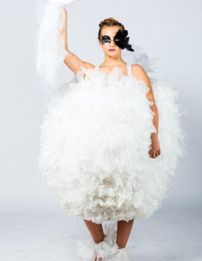 Rochelle Peries - Wild Swans